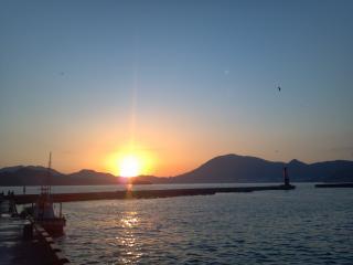 CameraZOOM-20120927061844536.jpg